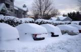 Buried Cars