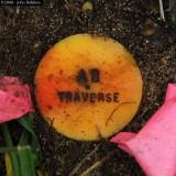 MD: AB Traverse