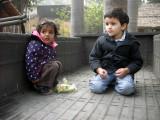 With pal Zoya
