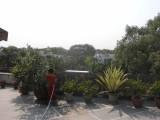 Terrace gardening.