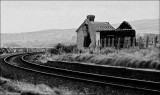 Skinner (Tracks)