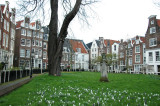 Begijnhof - a peaceful oasis in the heart of the city