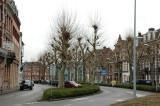 the Wyck district