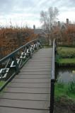 kippenbruggen - humped back bridges
