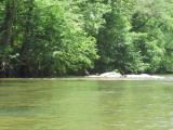 Dan River Kayaking - 2010-05-08