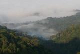 Two trips to Lampakbia and Kaengkrachan Jan/Feb 2010