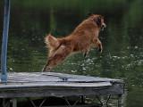 Bigger Leap!