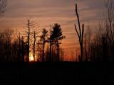 Sunset at Carlos Avery 1.jpg