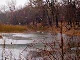 Snow, Sleet,  Rain Burrr! Later there was even lightning!