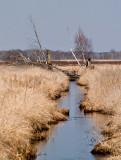 Carlos Avery Waterway rp.jpg