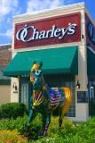 A Charliehorse