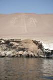Paracas & Islas Ballestas