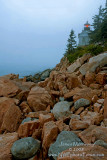 2008_July_BarHarbor+NH-0119_w ADJ.jpg