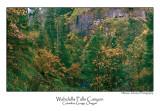 Wahclella Falls Canyon Pano.jpg