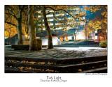 Park Light.jpg