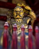 Kyoto temple guard