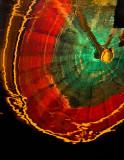 Wheel of Fortunes