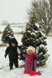 Christmas Tree Hunting.JPG