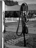 Rope & Fence