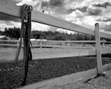 Rope & Fence 3
