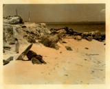 Kwaj-1944-shells-on-beach