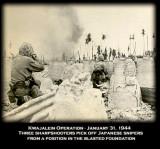 Roi Namur, US Marine Sharpshooters pick off Japanese Snipers