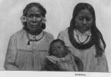 Linear & Libidielok 1895
