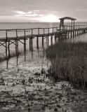 Lamar Wetlands