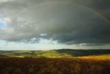 Washburn Rainbow  09_d70_DSC_1029