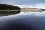 Thruscross Reservoir  10_DSC_0385