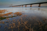 Severn Bridge  10_DSC_0656