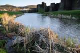 Caerphilly Castle  10_DSC_0855