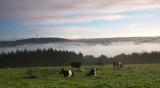 Mist Over Washburn Valley DSC_4130