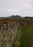 Hadrians Wall Walk DSC_6188