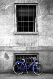 Bue Bike