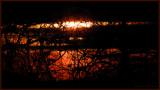 Lurking sunset