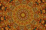 _MG_2330 Indian Fabric