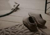 _MG_0062 Gardening Shoes