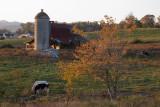 _MG_9599 Approaching Sunset 2007