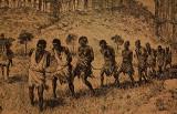 Captured Slave gang