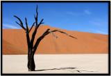 Namibia Ago 2007