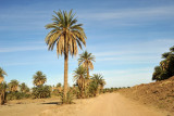 Road to the ruins of Ancient Kerma