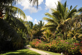 La Plantation Hotel garden