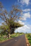 The road to Balaclava