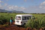 Washing the bus in a small stream through the sugar cane fields near Balaclava