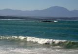 Waves and Seal Island, Mosselbaai