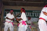 Tharu Culture Programme, Sauraha, Central Terai