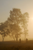 A pair of cyclists heading for Sauraha, early morning