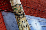 Alley Big Cat,  urban Ghost of Wilderness.