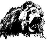 lionmir SA soft.jpg